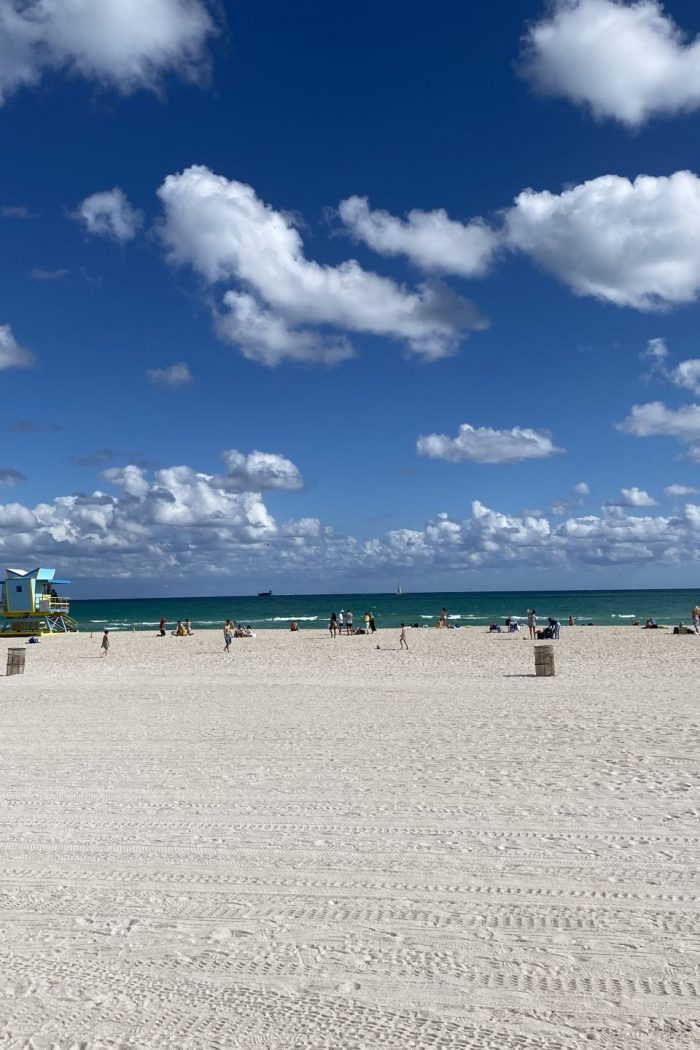 7 Highlights of Miami Beach: What to Do and See