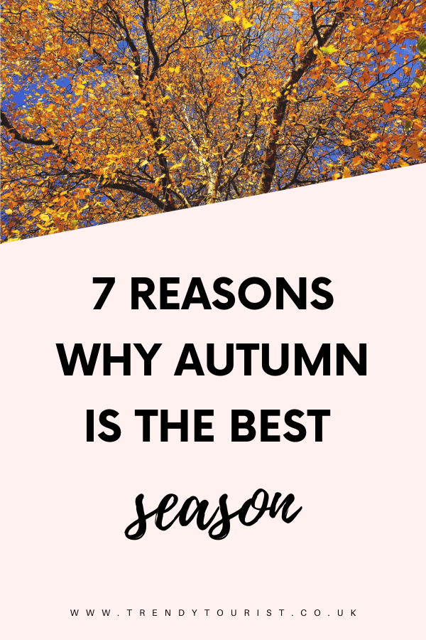 7 Reasons Why Autumn is the Best Season