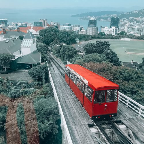 Wellington Travel Guide: What to See and Things to Do